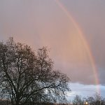 A late afternoon shower resulted in a gold-filled rainbow, looking south from Hampstead Heath, London.